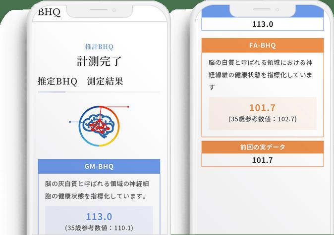 推定BHQ測定結果のスクリーンショット